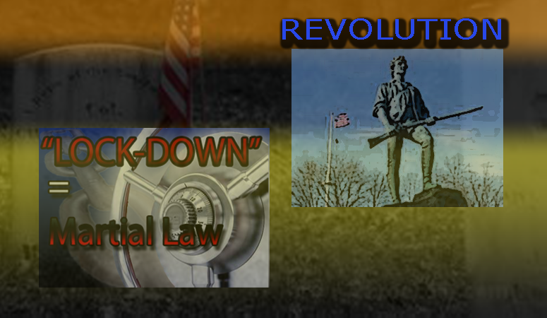 revolution against lockdown